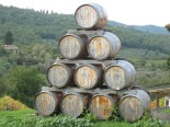 Vendemmia: a colheita de uva, azeitonas e trufas no outono